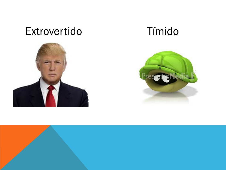ExtrovertidoTímido