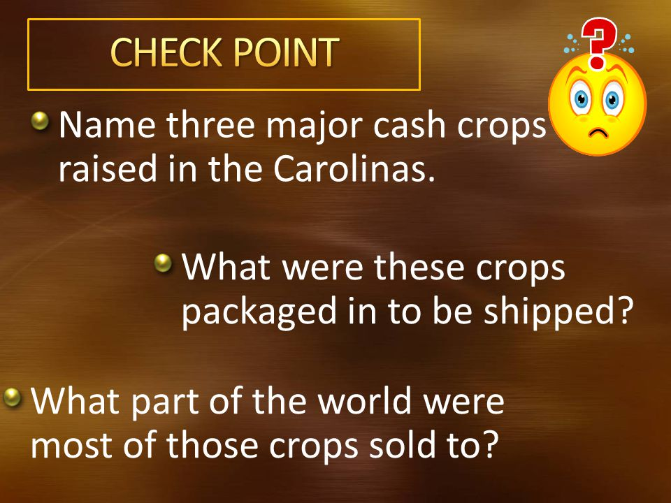 Name three major cash crops raised in the Carolinas.