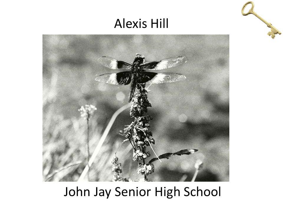 Alexis Hill John Jay Senior High School