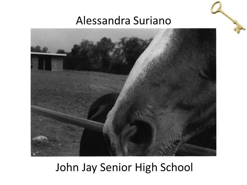 Alessandra Suriano John Jay Senior High School
