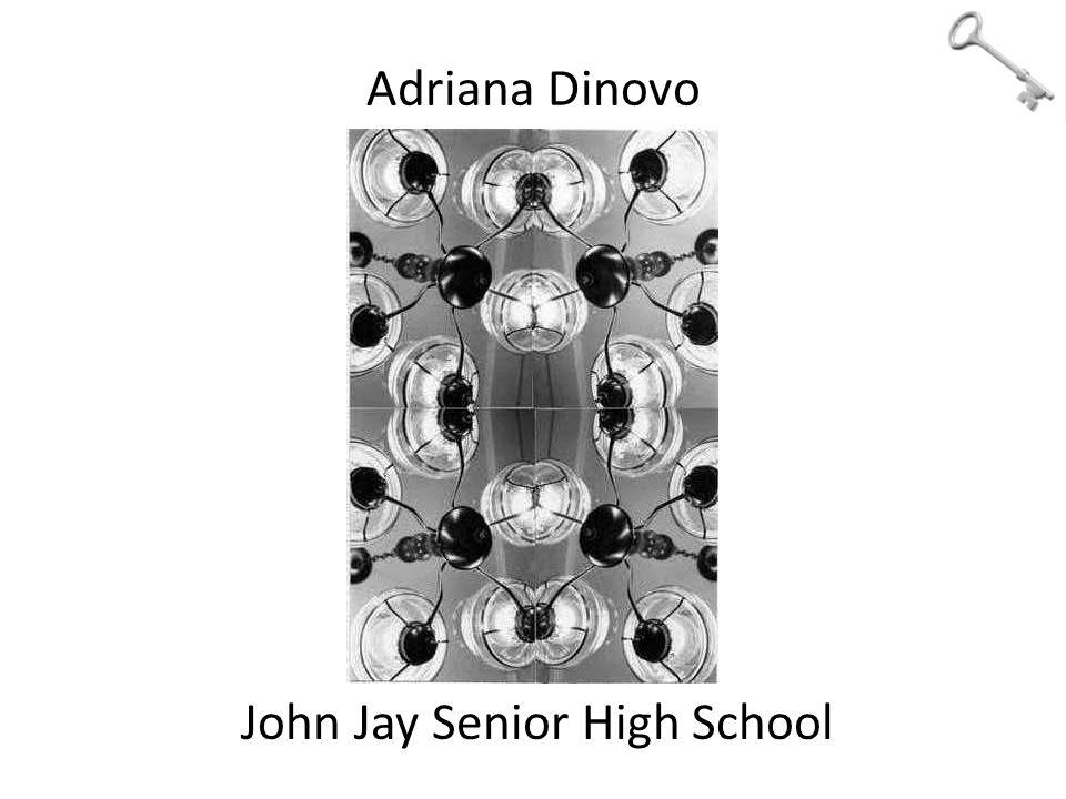 Adriana Dinovo John Jay Senior High School