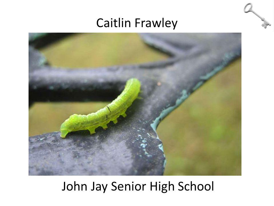 Caitlin Frawley John Jay Senior High School
