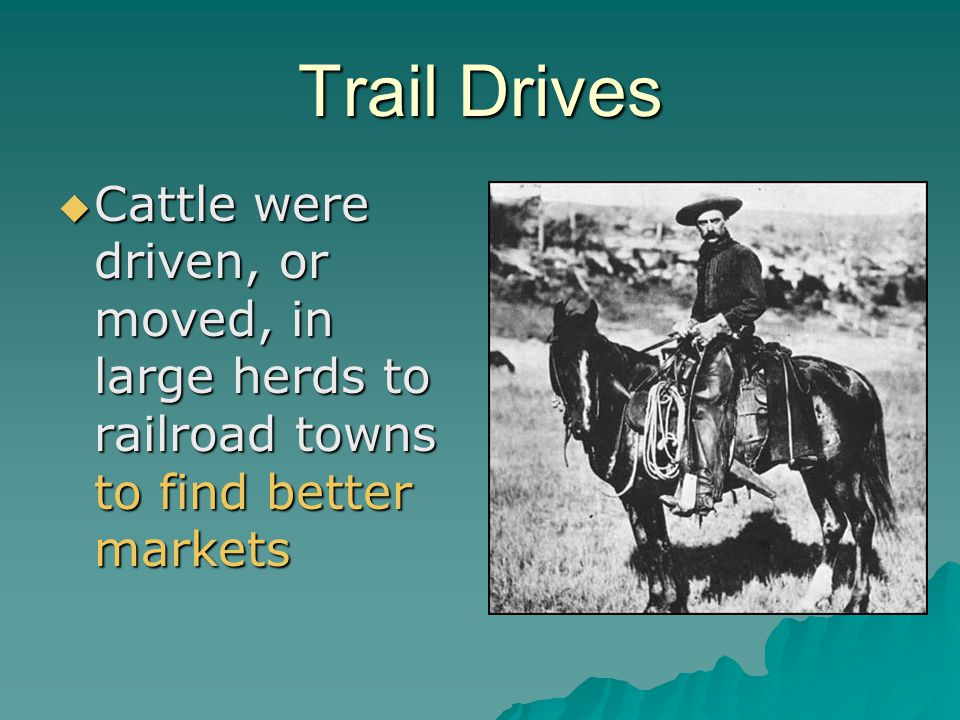 Trail Drives Cattle were driven, or moved, in large herds to railroad towns to find better markets Cattle were driven, or moved, in large herds to rai