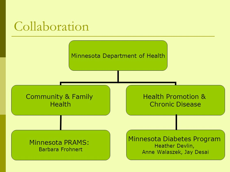 Strengths of partnership Minnesota PRAMS Knowledge of methodology and dataset Experience with analyzing complex sample survey data using SAS and SAS- callable SUDAAN Minnesota Diabetes Program Team of experienced analysts Extensive knowledge of diabetes Previous research with existing data (birth certificates) Well-established program with broad partnerships (ex.