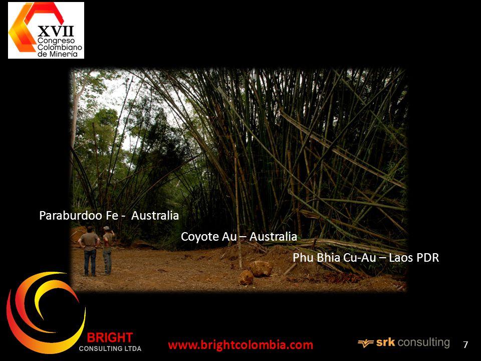 www.brightcolombia.com 7 Paraburdoo Fe - Australia Coyote Au – Australia Phu Bhia Cu-Au – Laos PDR