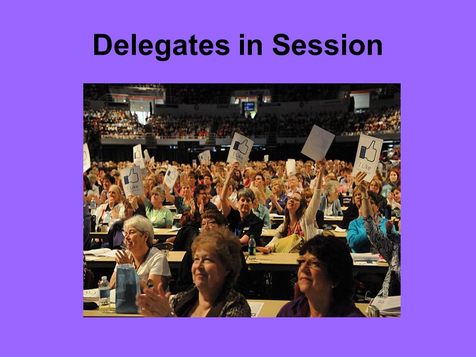Delegates in Session