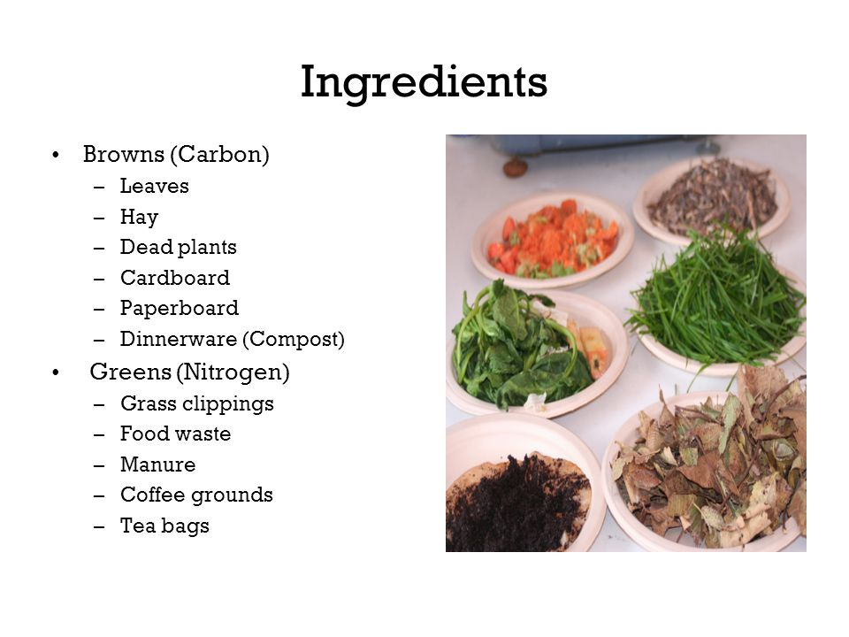 Ingredients Browns (Carbon) –Leaves –Hay –Dead plants –Cardboard –Paperboard –Dinnerware (Compost) Greens (Nitrogen) –Grass clippings –Food waste –Man