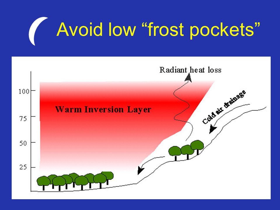 Avoid low frost pockets