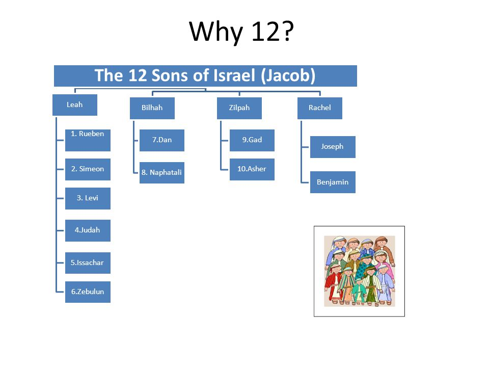 Why 12. The 12 Sons of Israel (Jacob) Leah 4.Judah 5.Issachar 6.Zebulun 1.