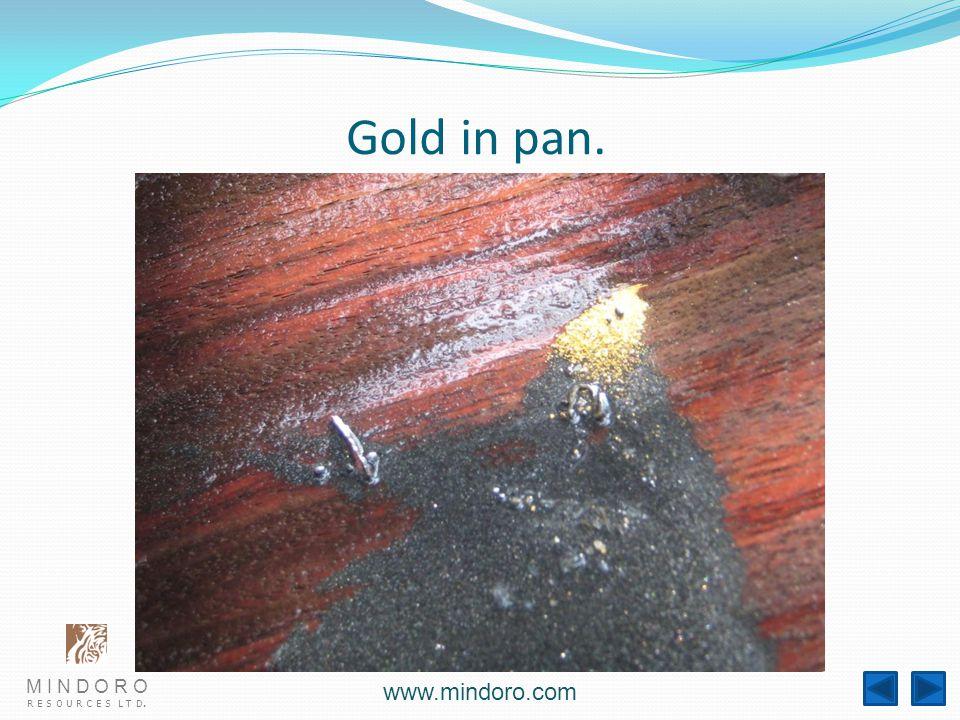 M I N D O R O R E S O U R C E S L T D. www.mindoro.com Gold in pan.