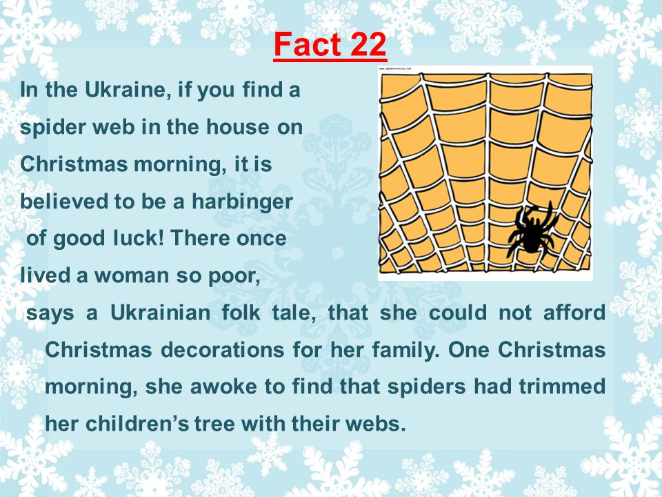 Fact 22 In the Ukraine, if you find a spider web in the house on Christmas morning, it is believed to be a harbinger of good luck.