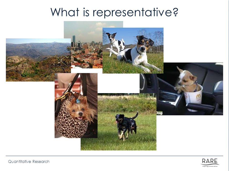 Quantitative Research What is representative