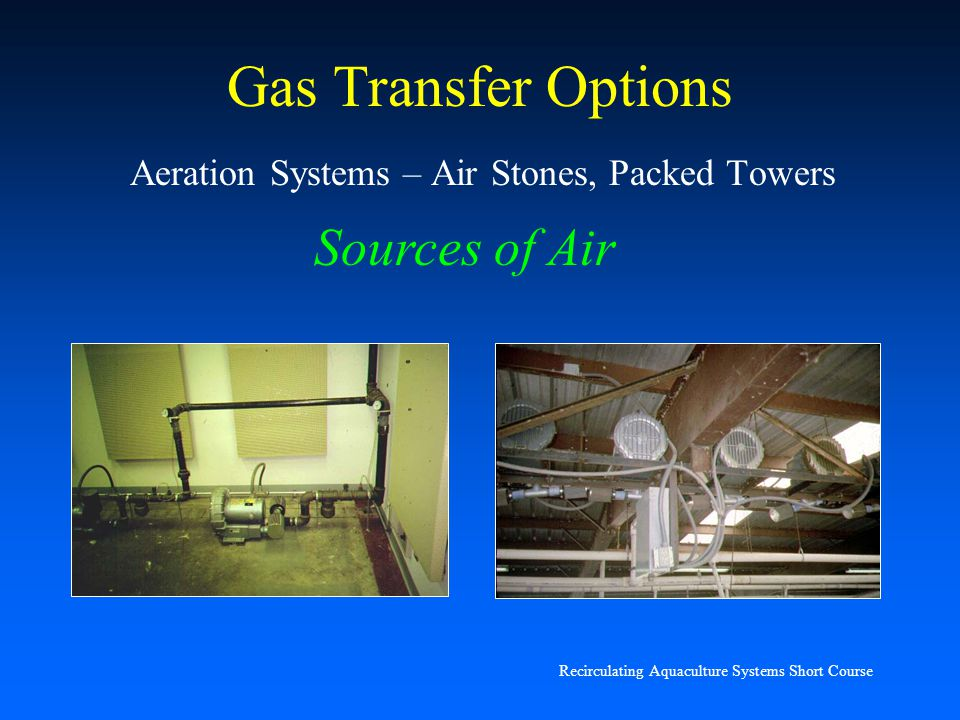 Recirculating Aquaculture Systems Short Course Gas Transfer Options Air stones: very inefficient O 2 transfer devices (3 – 7%)