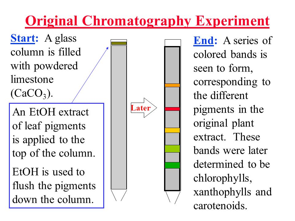 Original Chromatography Experiment Later Start: A glass column is filled with powdered limestone (CaCO 3 ). End: A series of colored bands is seen to