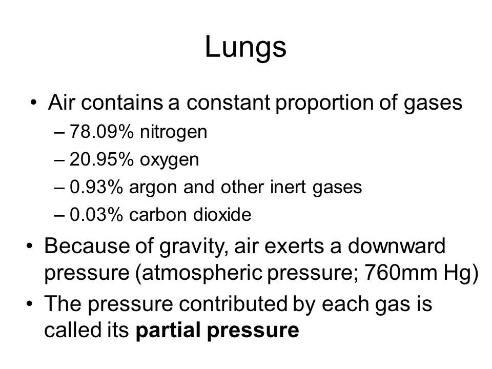 Lungs Air contains a constant proportion of gases –78.09% nitrogen –20.95% oxygen –0.93% argon and other inert gases –0.03% carbon dioxide Because of