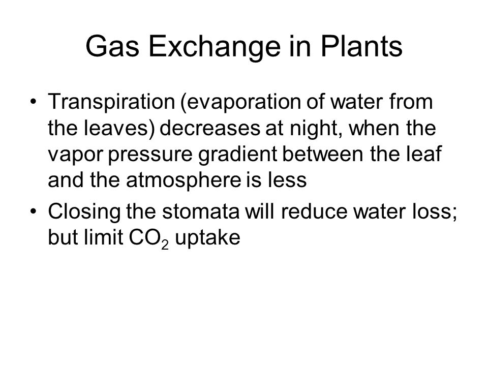 Gas Exchange in Plants Transpiration (evaporation of water from the leaves) decreases at night, when the vapor pressure gradient between the leaf and