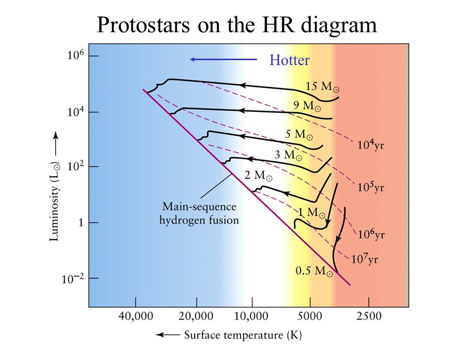 Protostars on the HR diagram Hotter