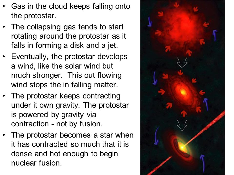Gas in the cloud keeps falling onto the protostar. The collapsing gas tends to start rotating around the protostar as it falls in forming a disk and a