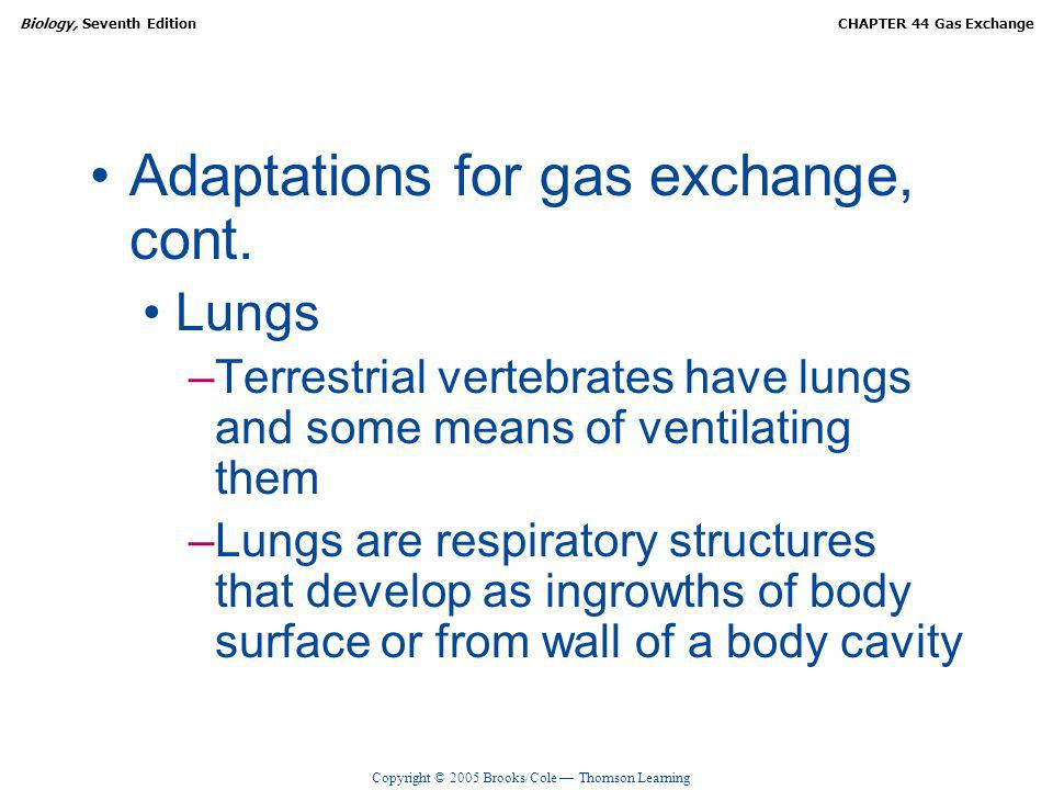 Copyright © 2005 Brooks/Cole Thomson Learning Biology, Seventh EditionCHAPTER 44 Gas Exchange Adaptations for gas exchange, cont. Lungs –Terrestrial v