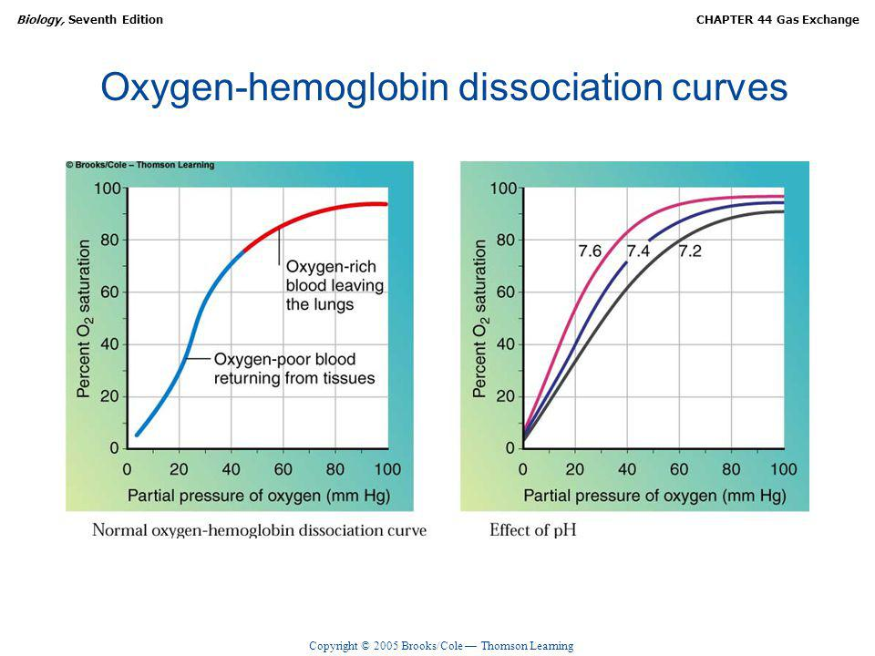 Copyright © 2005 Brooks/Cole Thomson Learning Biology, Seventh EditionCHAPTER 44 Gas Exchange Oxygen-hemoglobin dissociation curves