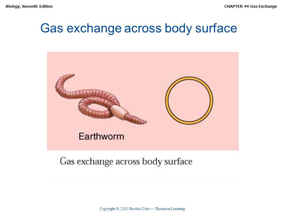 Copyright © 2005 Brooks/Cole Thomson Learning Biology, Seventh EditionCHAPTER 44 Gas Exchange Gas exchange across body surface