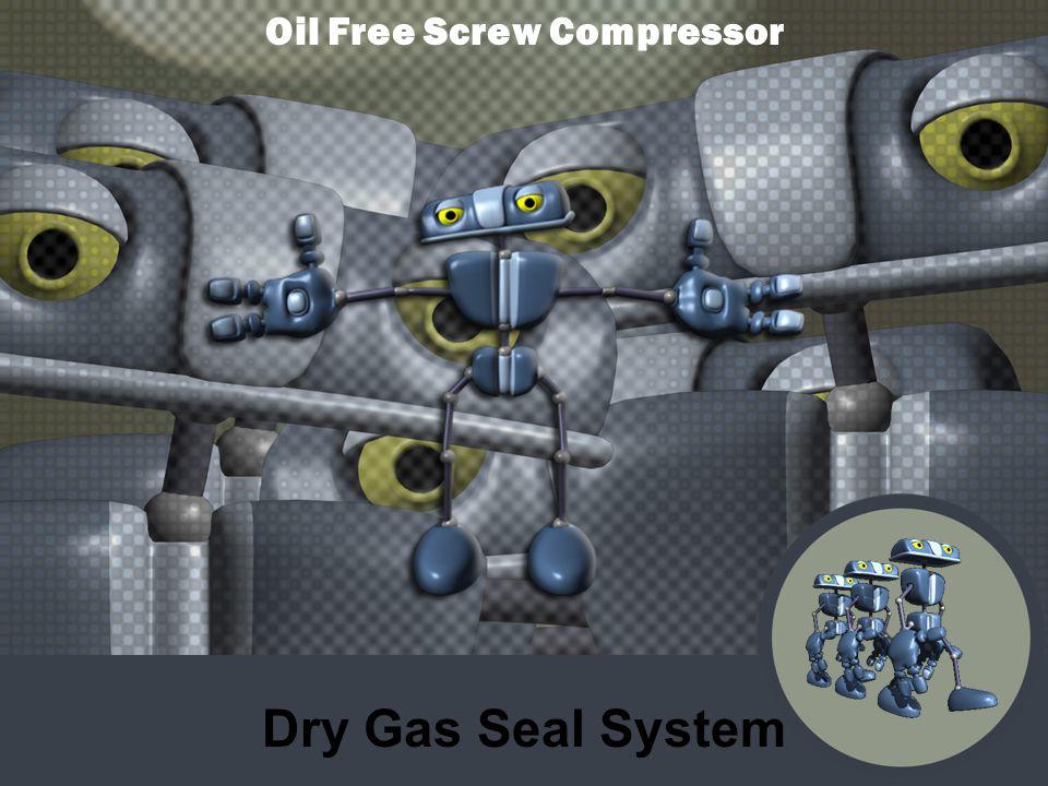 Dry Gas Seal System Oil Free Screw Compressor