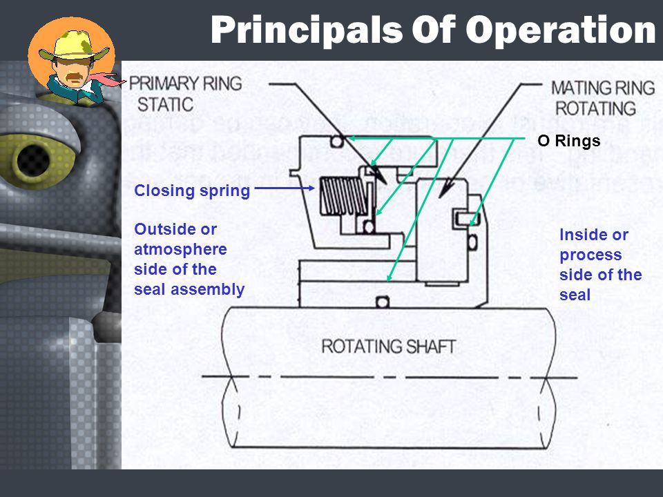 Principals Of Operation O Rings Closing spring Outside or atmosphere side of the seal assembly Inside or process side of the seal