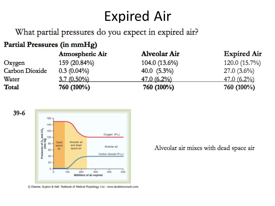 Expired Air