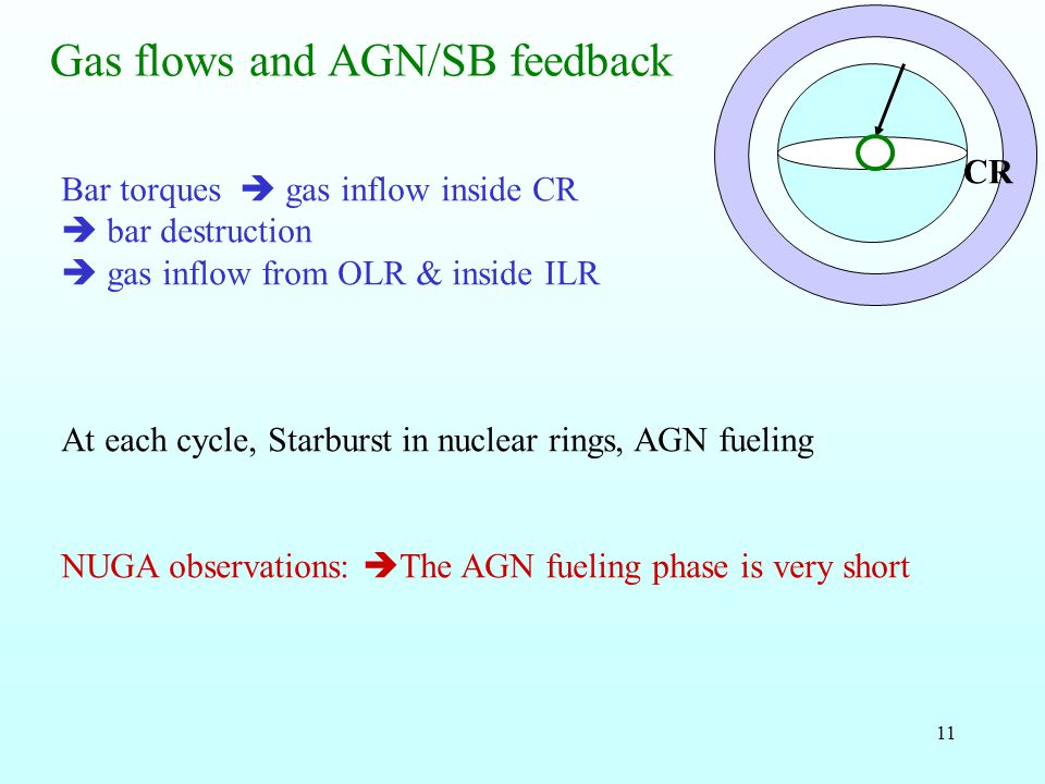 11 Gas flows and AGN/SB feedback Bar torques gas inflow inside CR bar destruction gas inflow from OLR & inside ILR At each cycle, Starburst in nuclear rings, AGN fueling NUGA observations: The AGN fueling phase is very short CR