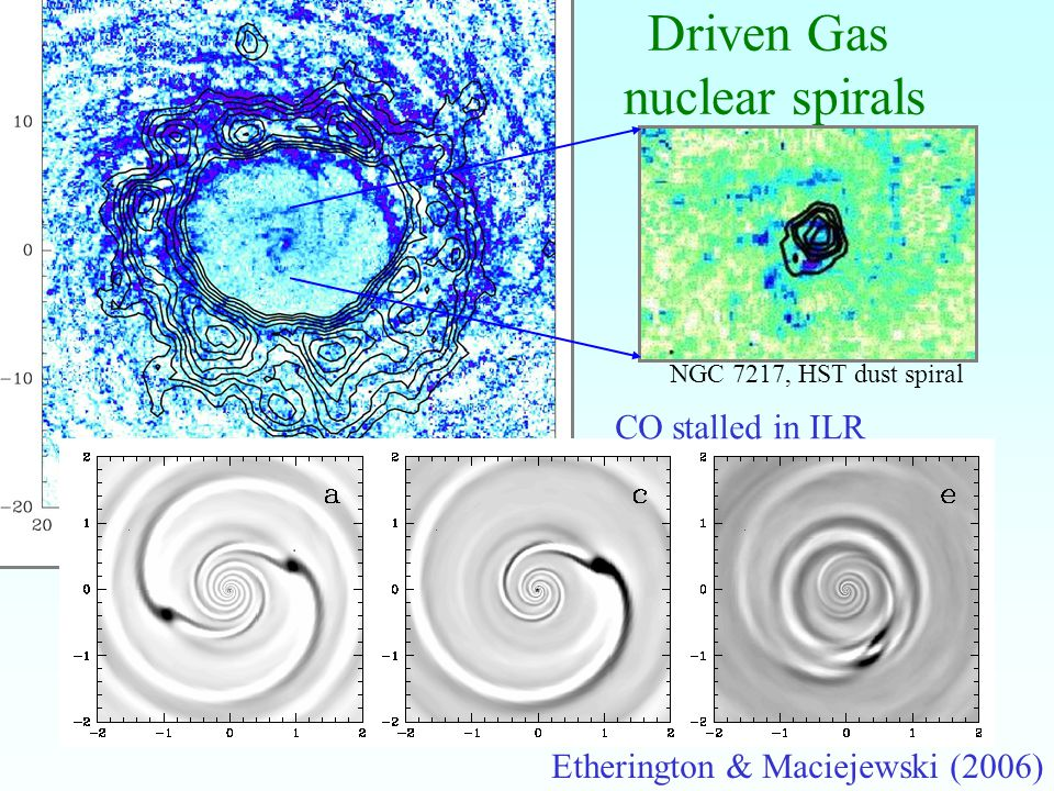 22 Driven Gas nuclear spirals Etherington & Maciejewski (2006) NGC 7217, HST dust spiral CO stalled in ILR