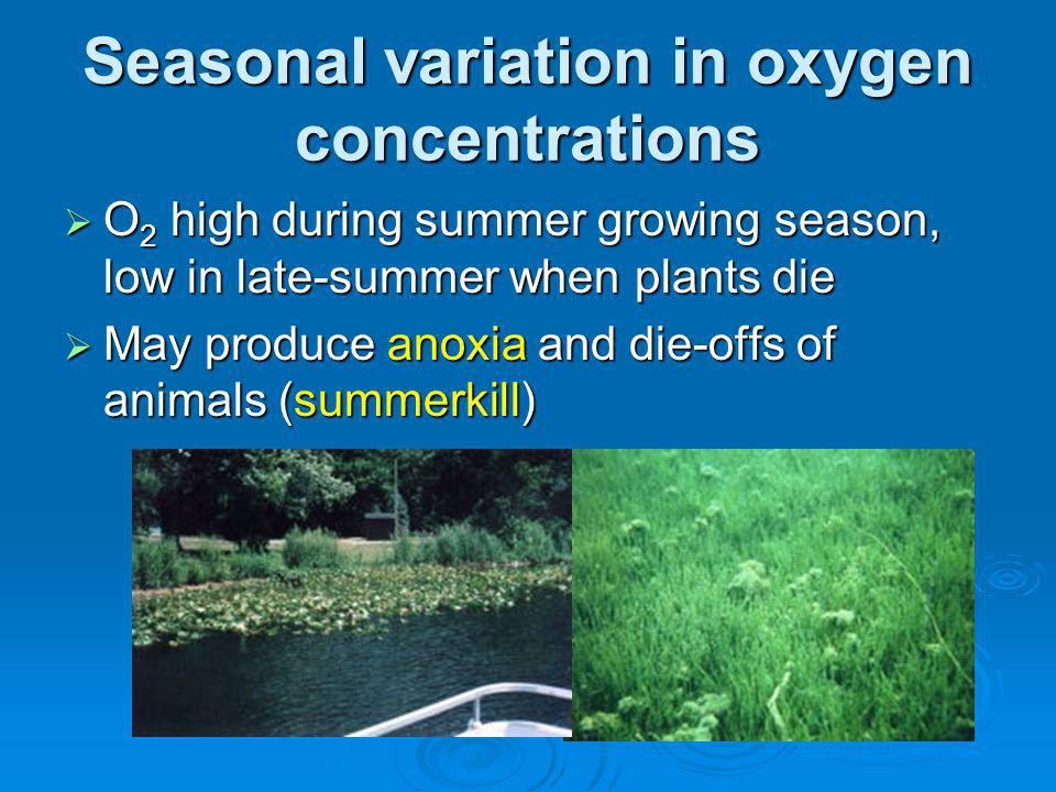 Seasonal variation in oxygen concentrations O 2 high during summer growing season, low in late-summer when plants die O 2 high during summer growing season, low in late-summer when plants die May produce anoxia and die-offs of animals (summerkill) May produce anoxia and die-offs of animals (summerkill)