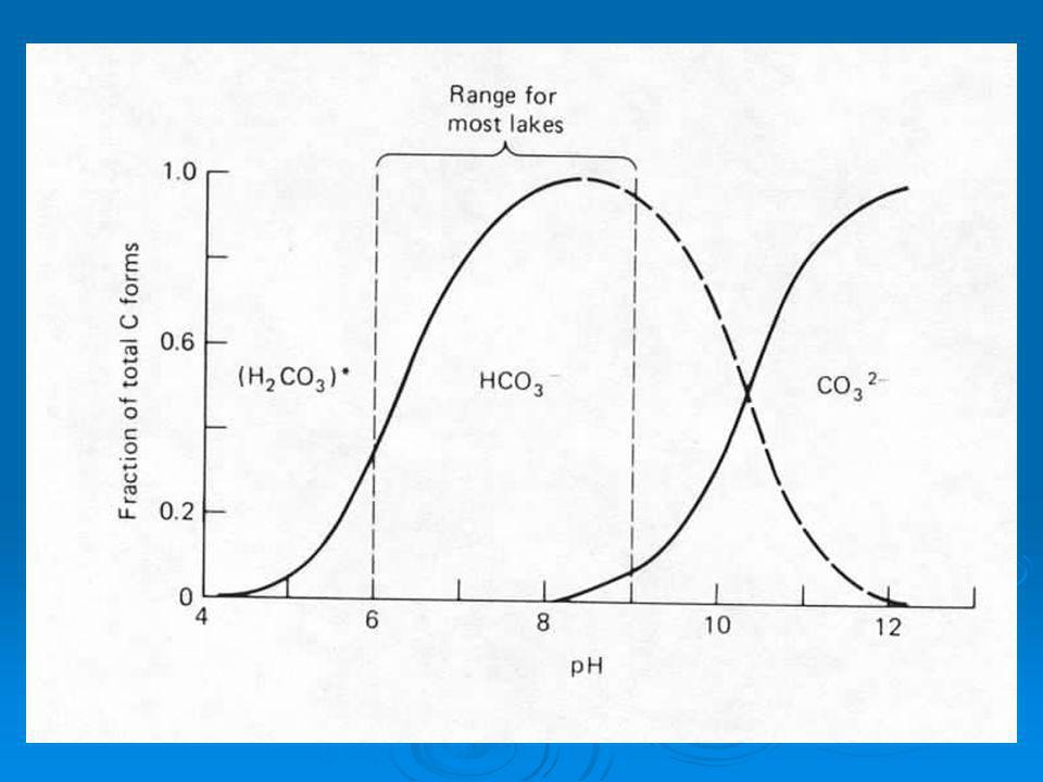 CO 2 + H 2 O = H 2 CO 3 = HCO 3 - + H + = CO 3 2- + 2H + Putting it all together Addition of CO 2 via respiration pushes equilibrium to right and lowers pH Removal of CO 2 via photosynthesis pulls equilibrium to left and raises pH