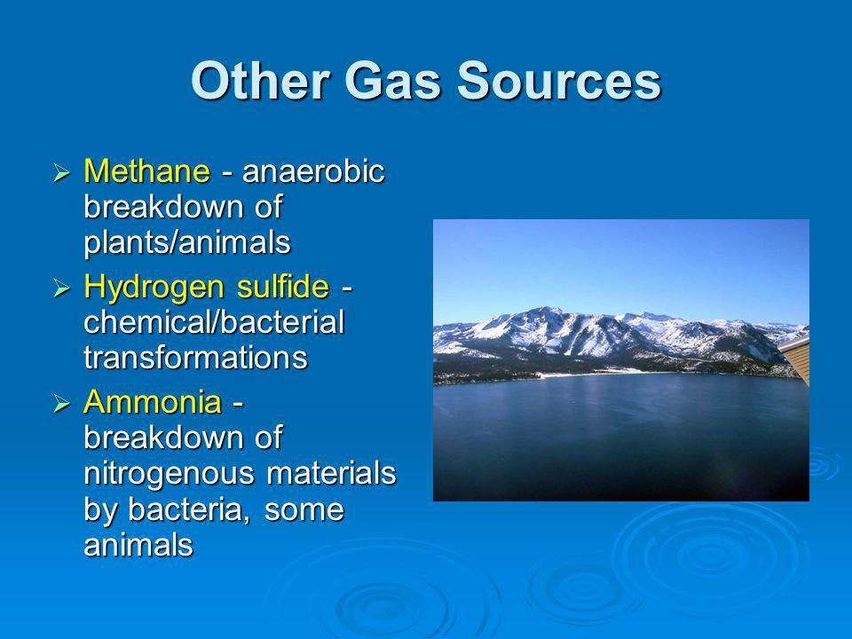 Other Gas Sources Methane - anaerobic breakdown of plants/animals Methane - anaerobic breakdown of plants/animals Hydrogen sulfide - chemical/bacterial transformations Hydrogen sulfide - chemical/bacterial transformations Ammonia - breakdown of nitrogenous materials by bacteria, some animals Ammonia - breakdown of nitrogenous materials by bacteria, some animals