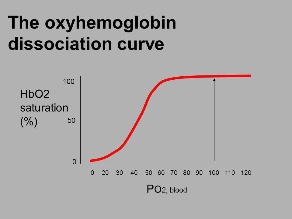 The oxyhemoglobin dissociation curve 0 20 30 40 50 60 70 80 90 100 110 120 100 50 0 P O 2, blood HbO2 saturation (%)