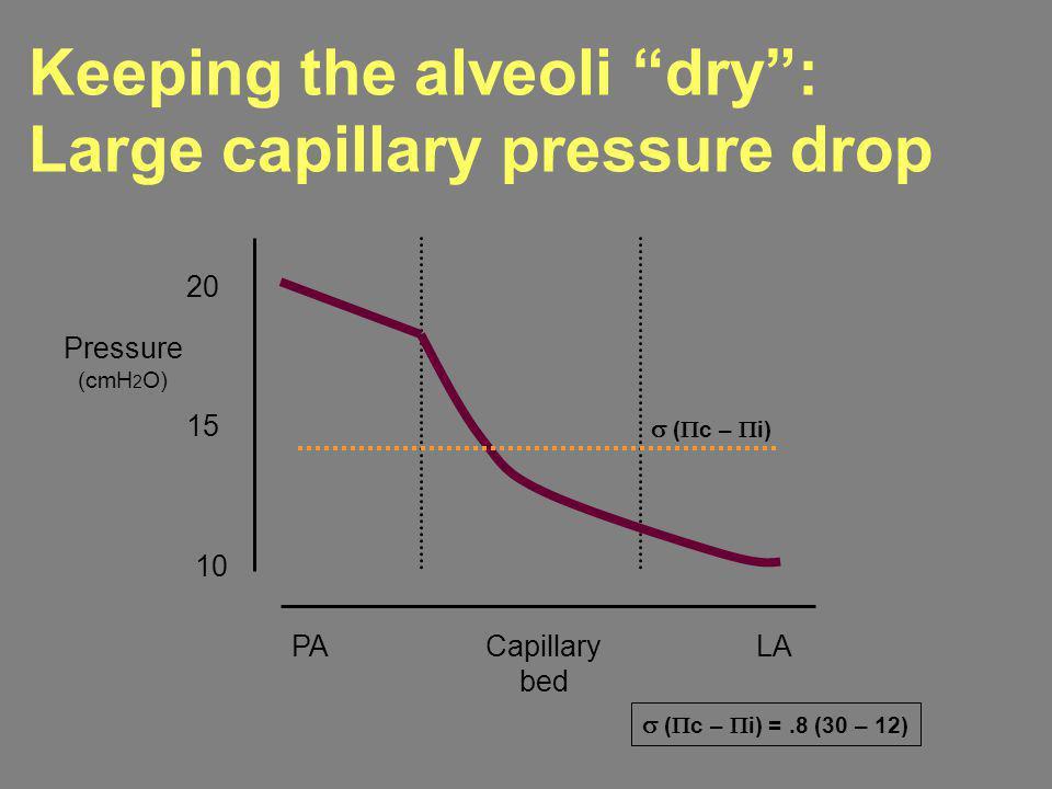 PACapillary bed LA 20 10 15 ( c – i) =.8 (30 – 12) ( c – i) Pressure (cmH 2 O) Keeping the alveoli dry: Large capillary pressure drop