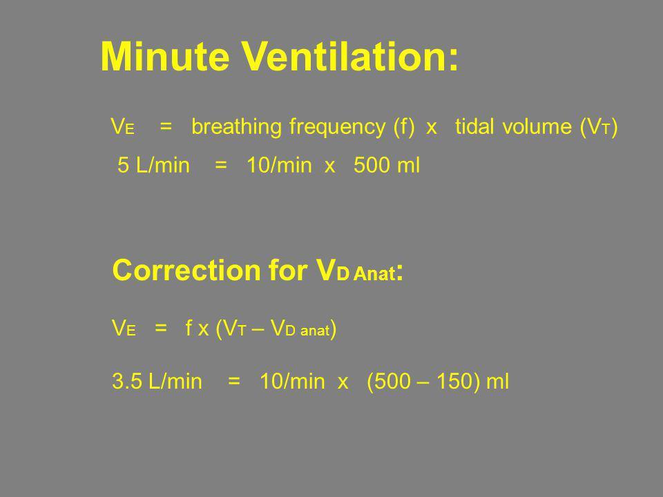 Minute Ventilation: V E = breathing frequency (f) x tidal volume (V T ) 5 L/min = 10/min x 500 ml Correction for V D Anat : V E = f x (V T – V D anat