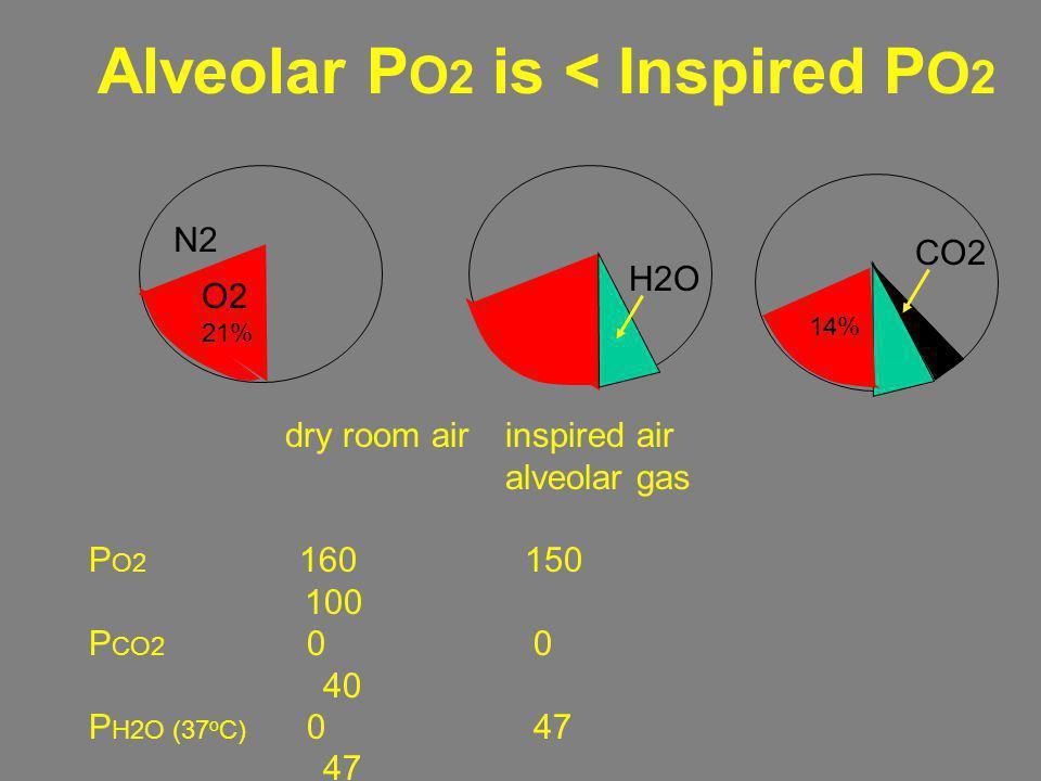 dry room airinspired air alveolar gas P O2 160 150 100 P CO2 0 0 40 P H2O (37 o C) 0 47 47 P N2 600 563 573 Total (mmHg) 760 760 760 N2 O2 21% H2O 14%