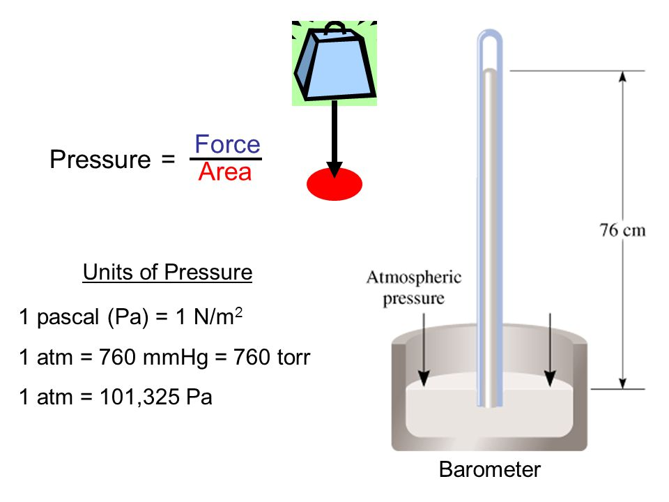 Units of Pressure 1 pascal (Pa) = 1 N/m 2 1 atm = 760 mmHg = 760 torr 1 atm = 101,325 Pa Barometer Pressure = Force Area
