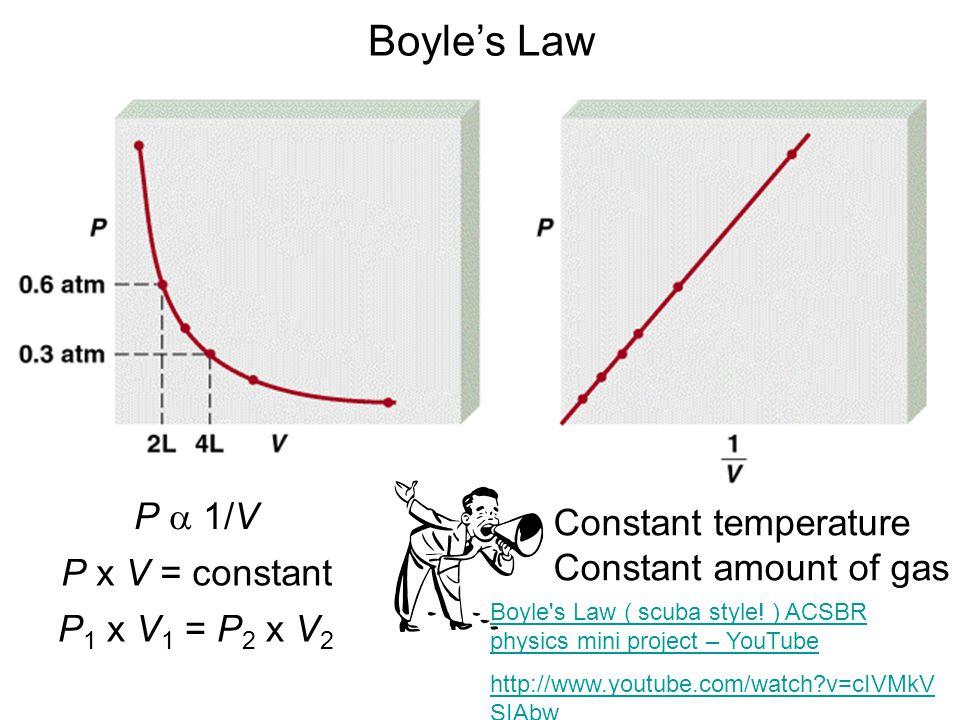 P 1/V P x V = constant P 1 x V 1 = P 2 x V 2 Boyles Law Constant temperature Constant amount of gas Boyle s Law ( scuba style.