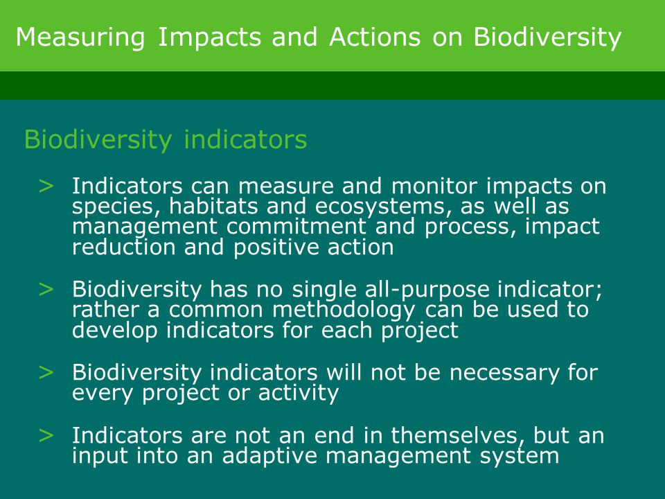 Biodiversity indicators > Indicators can measure and monitor impacts on species, habitats and ecosystems, as well as management commitment and process