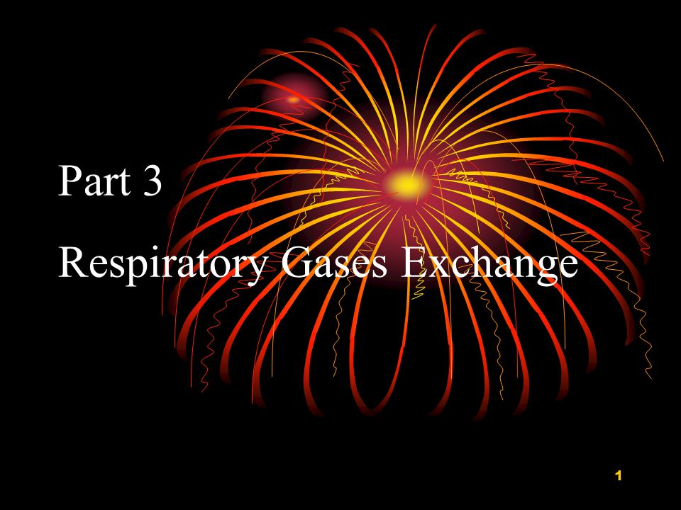 1 Part 3 Respiratory Gases Exchange