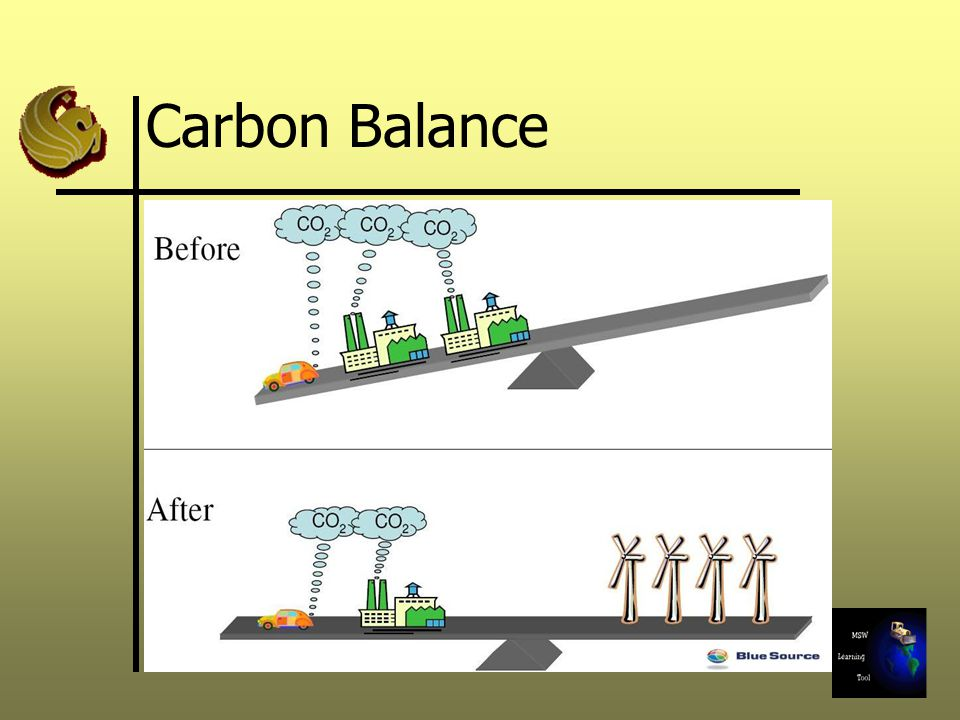 Carbon Balance