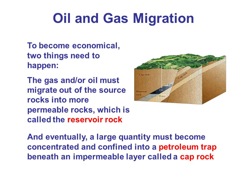 Oil and Gas Migration To become economical, two things need to happen: The gas and/or oil must migrate out of the source rocks into more permeable rocks, which is called the reservoir rock And eventually, a large quantity must become concentrated and confined into a petroleum trap beneath an impermeable layer called a cap rock