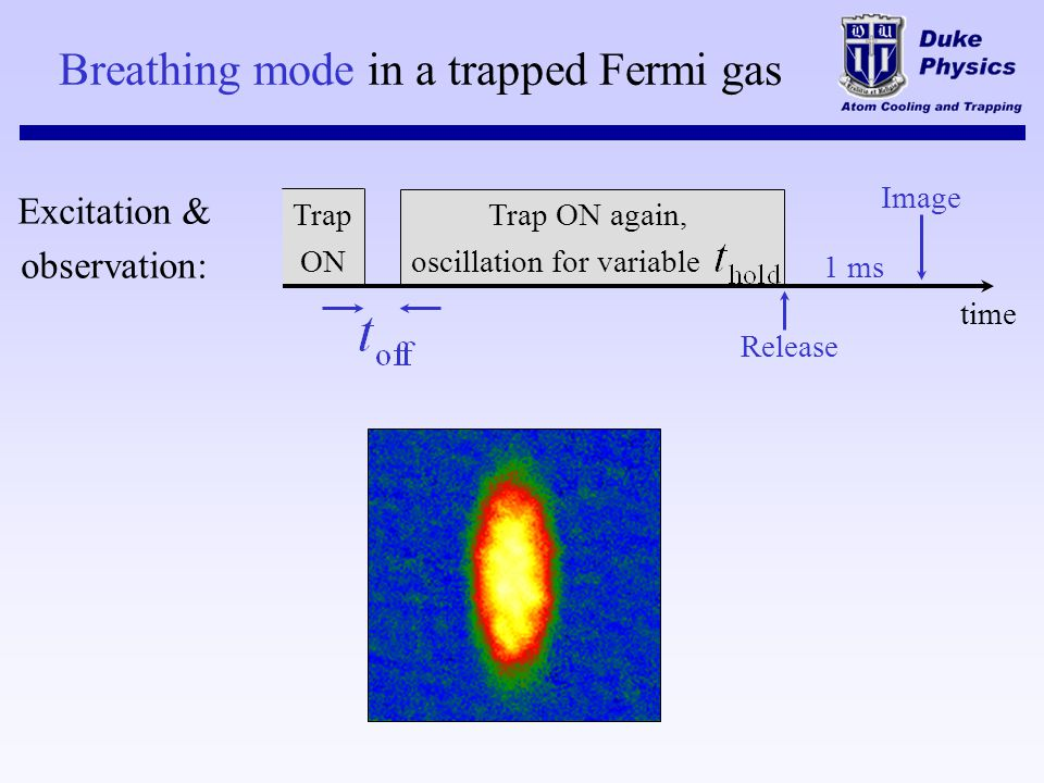 Breathing mode in a trapped Fermi gas Trap ON again, oscillation for variable Image 1 ms Release time Trap ON Excitation & observation: