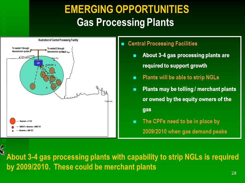 28 EMERGING OPPORTUNITIES Gas Processing Plants About 3-4 gas processing plants with capability to strip NGLs is required by 2009/2010.