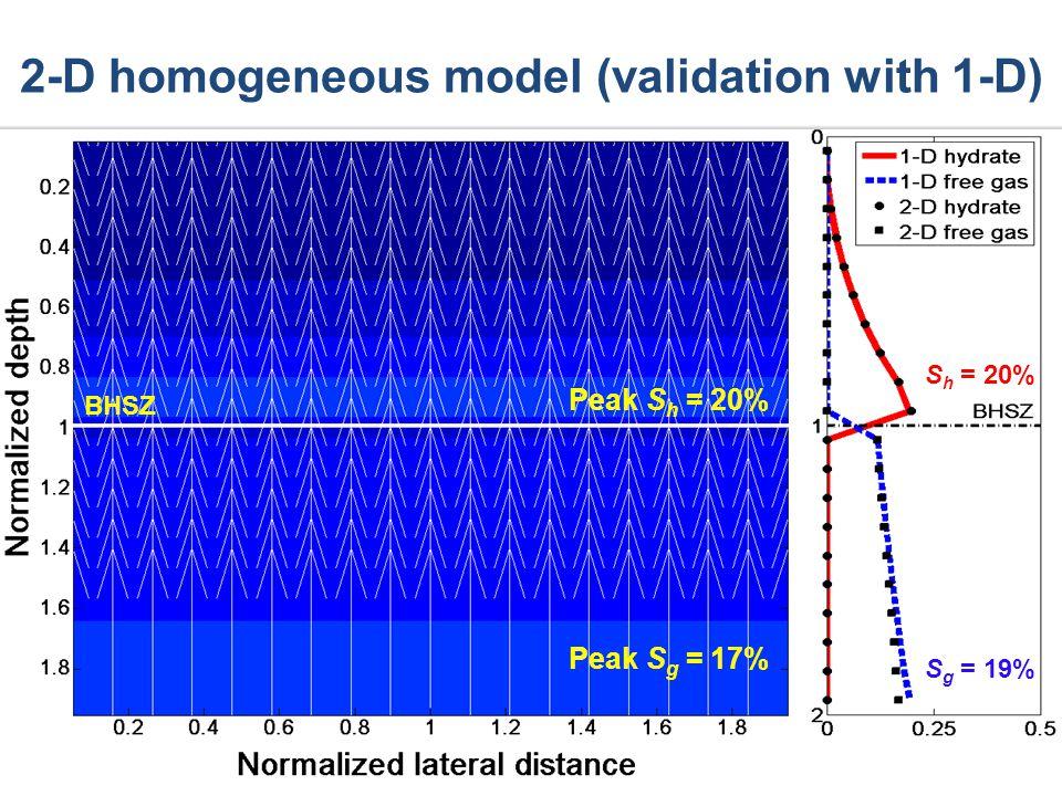 2-D homogeneous model (validation with 1-D) BHSZ Peak S h = 20% Peak S g = 17% S g = 19% S h = 20%