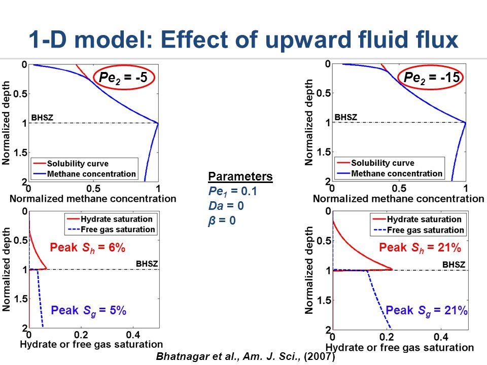 1-D model: Effect of upward fluid flux Bhatnagar et al., Am.