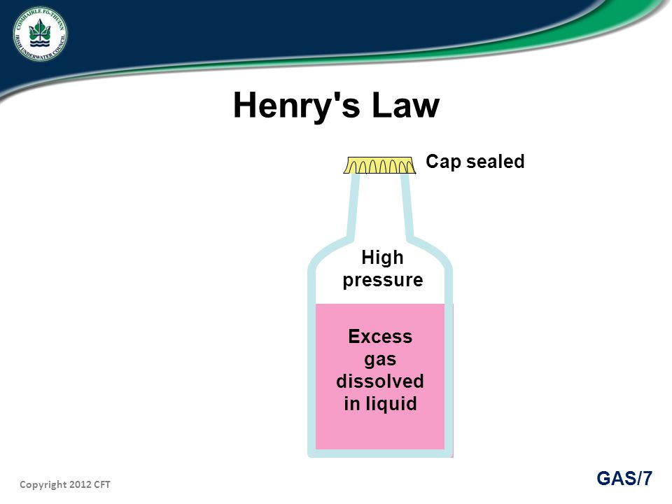 Copyright 2012 CFT GAS/7 Henry s Law High pressure Excess gas dissolved in liquid Cap sealed
