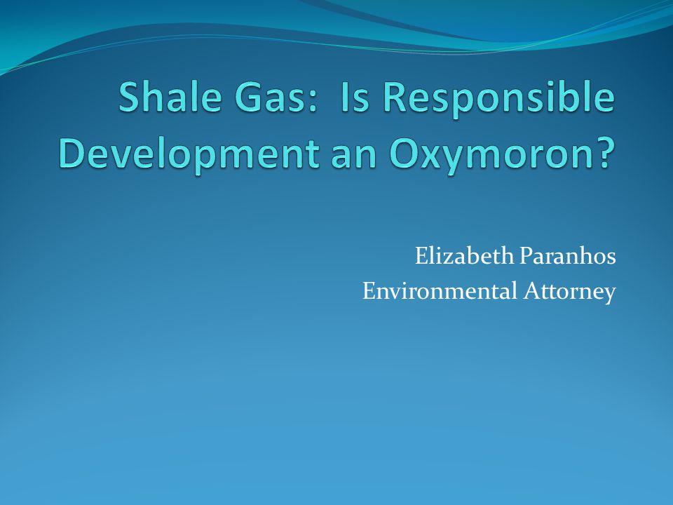 Elizabeth Paranhos Environmental Attorney