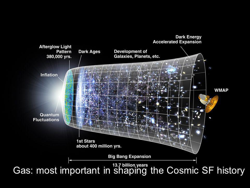 Gas: most important in shaping the Cosmic SF history